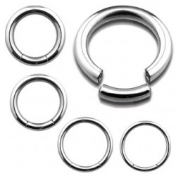 Surgical Steel Segment Rings