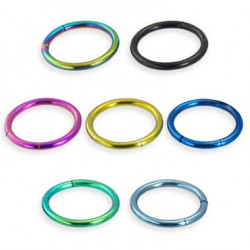 Titanium Anodized Surgical Steel Segment Rings